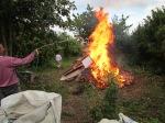 Burning the waste wood